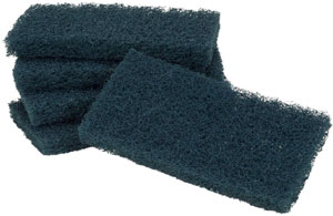scouring pads and sticks 2